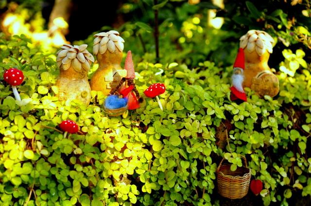 quarto jardim de fadas:jardim de fadas – The Magic Onion fairy garden contest (part IV)